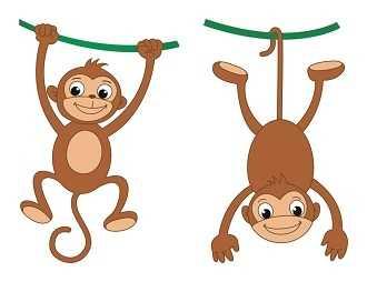 属猴的男人性格和爱情 属猴人的性格脾气好不好