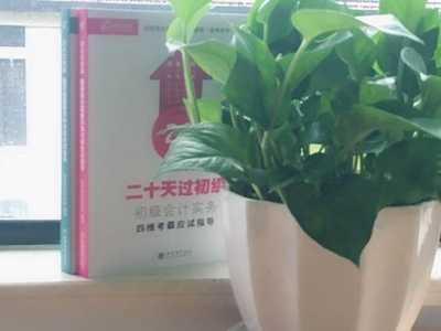 上海初级会计证书 上海2018初级会计证书领取需要居住证